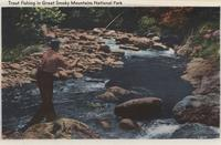 Trout Fishing in the Great Smoky Mountains National Park