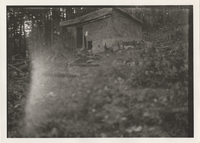 Tar-paper shack of Mt. LeConte where first two Park Commissioners Parties stayed, built in 1924