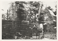 First Cabin on Mt. LeConte, under construction, winter of 1925-26
