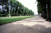 Versailles: Formal Gardens