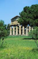 Paestum: Temple of Ceres