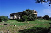 Paestum: Temple of Neptune