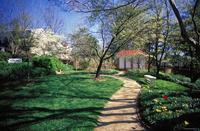 University of Virginia: South Gardens