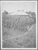 School House, Corn Field, Miss Burton