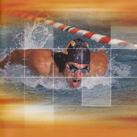 University of Tennessee Swimming and Diving Media Guides