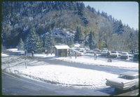 Early Snow in Newfound Gap