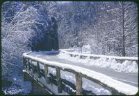 Little River Gorge in Winter