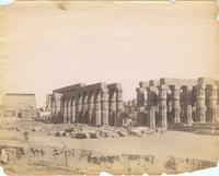 (Luxor) Colonnes d' Amenhotep III (XVIII dyn)