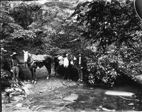 Two men with a horse and a pack mule at a creek crossing