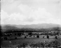Cades Cove with Bald (Gregory) Mountain in the distance