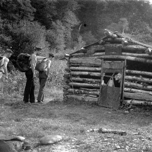 Herbert M. Webster Photograph Collection