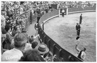 matador throws his hat as other men groom the ring
