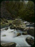 Chapman Fork