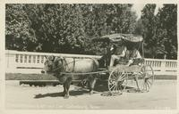 The Gatlinburg Street Car-Gatlinburg, Tenn. (1-1-189)
