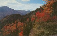 Fall Color Scene in the Heart of the Great Smoky Mountains National Park (GS-176)