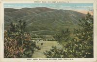 Greagory Bald, 5000 Feet Elevation, Great Smoky Mountains National Park, Tenn. - N.C. (12)