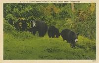 """A Happy Native Family"" in the Great Smoky Mountains (N-706)"