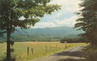 View of Cades Cove with Greagory Bald in the Distance, Great Smoky Mountains National Park