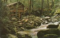 Tub Mill at Junglebrook - on the Cherokee Orchard Loop Road - Great Smoky Mountains National Park (GS-340)