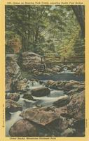 Scene on Roaring Fork Creek, showing Rustic Foot Bridge Great Smoky Mountains National Park (528)