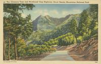 The Chimney Tops and Newfound Gap Highway, Great Smoky Mountains National Park (207)