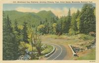 Newfound Gap Highway, showing Chimney Tops, Great Smoky Mountains National Park (513)