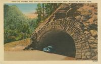 The Highway that Tunnels Mountains in the Great Smoky Mountains National Park (N908)