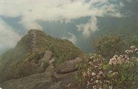 View from the Top of the Chimneys - Great Smoky Mountains National Park (GS-330)