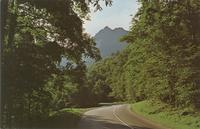 The Chimney Tops and Highway U. S. 441 - Great Smoky Mountains National Park (GS-318)