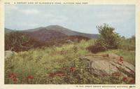 A Distant View of Climan's Dome, Altitude 6642 Feet in the Great Smoky Mountains National Park (AC-21)