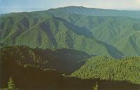 Clingmans Dome - Highest Peak in the Great Smoky Mountains National Park - Alt 6642 Ft. (GS-336)