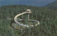 Observation Tower atop Clingmans Dome - Highest Peak in the Great Smoky Mountains National Park (GS-211)