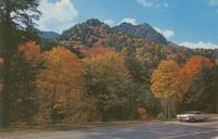 Autumn Colors Along U. S. 441 - Great Smoky Mountains National Park (GS-175)