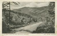In the Smoky Mountains near Maryville, Tennessee (GM-4)