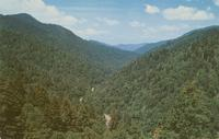 Little Pigeon River Valley - as seen from the Transmountain Highway U. S. 441 - Great Smoky Mountains National Park (GS-56)