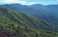 Mt. Guyot and Mt. Chapman - Great Smoky Mountains National Park - Seen from the Greenbrier Pinnacle (GS-284)