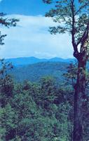 A Distant View of Mt. Guyot and Mt. Chapman the Great Smoky Mountains National Park