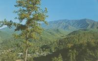 Gatlinburg, Tennessee and Mt. LeConte - Great Smoky Mountains National Park (GS-474)