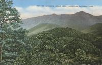 Mt. Le Conte, Great Smoky Mountains National Park (506)