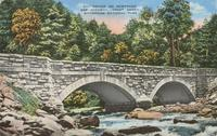 Bridge on Newfound Gap Highway, Great Smoky Mountains National Park (511)