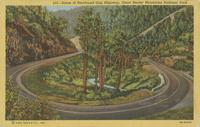 Scene of Newfound Gap Highway, Great Smoky Mountains National Park (531)