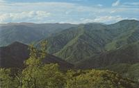 Panoramic View of the Great Smoky Mountains as seen from Barnetts Knob Fire Tower (GS-339)