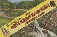Greetings from the Great Smoky Mountains National Park The Loop-Over, Laurel Falls (W-1)