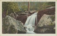 Two Rock Falls, The Great Smoky Mountains National Park (547)