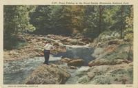 Trout Fishing in the Great Smoky Mountains National Park (C-27)