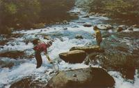 Trout Fishing the Great Smoky Mountains National Park