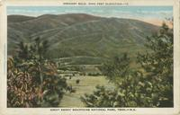 Greagory Bald, 5000 Feet Elevation, Great Smoky Mountains National Park, Tenn. - N.C. (12)