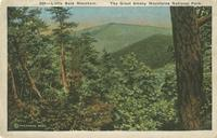 Little Bald Mountain. The Great Smoky Mountains National Park (539)