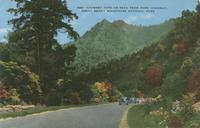 Chimney Tops as seen from Park Highway, Great Smoky Mountains National Park (556)