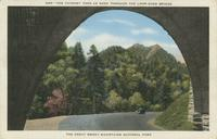 The Chimney Tops as seen through the Loop-Over Bridge the Great Smoky Mountains National Park (549)